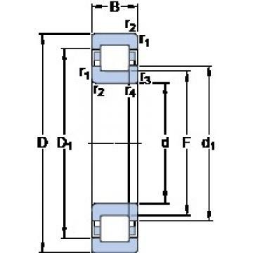SKF NUP 2220 ECP thrust ball bearings