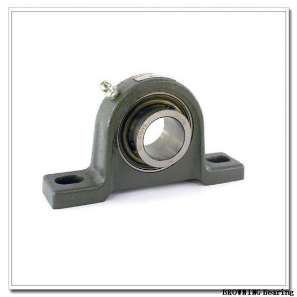 BROWNING VTWE-224  Take Up Unit Bearings #1 image